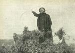 Padre Semeria, cappellano militare, che predica ai cavalleggeri da un pulpito da loro improvvisato ed infiorato